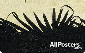 AllPosters.com Gift Card